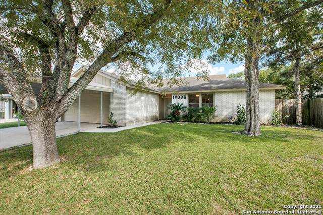 14006 Tree Crossing St, San Antonio, TX 78247 (MLS #1563759) :: Carter Fine Homes - Keller Williams Heritage