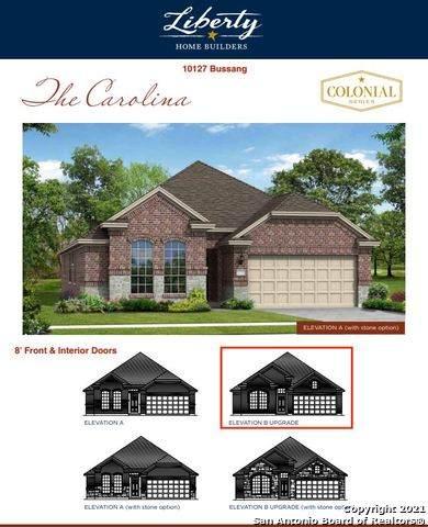 10127 Bussang, Schertz, TX 78154 (MLS #1563845) :: The Glover Homes & Land Group