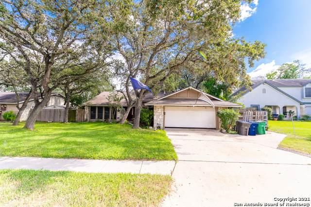 5810 Rebel Ridge St, San Antonio, TX 78247 (MLS #1563913) :: The Glover Homes & Land Group