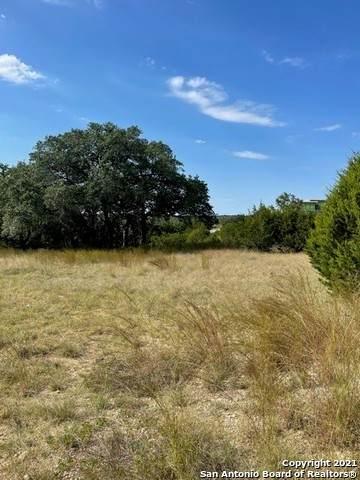 76 Sunriver, Boerne, TX 78006 (MLS #1563944) :: The Gradiz Group
