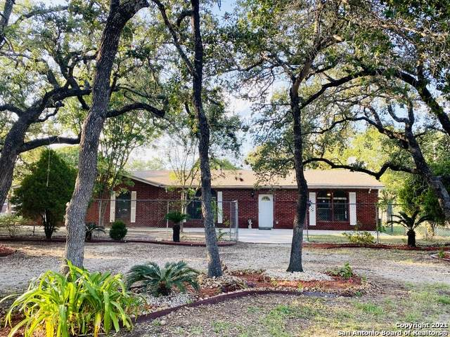 980 Sherwood Forest Dr, Poteet, TX 78065 (MLS #1564086) :: Beth Ann Falcon Real Estate