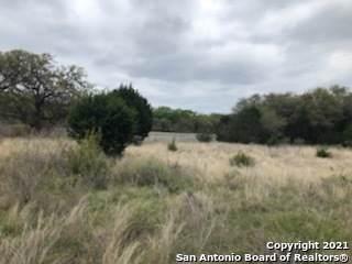26527 Weiss Fels, New Braunfels, TX 78132 (MLS #1564116) :: The Gradiz Group