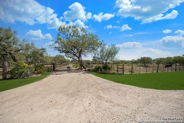 427 East Trail, Pleasanton, TX 78064 (MLS #1564137) :: The Glover Homes & Land Group