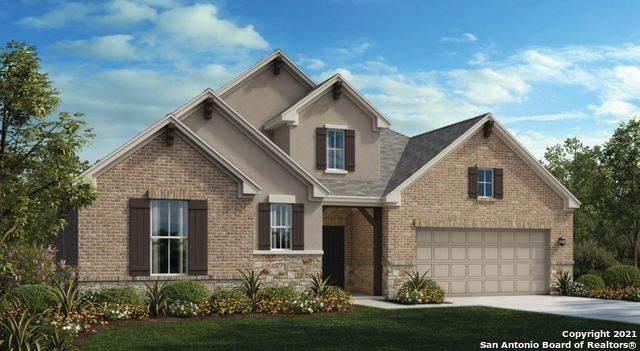 31813 Acacia Vista, Bulverde, TX 78163 (MLS #1564216) :: Concierge Realty of SA