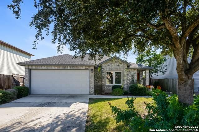 8042 Chestnut Cape Dr, Converse, TX 78109 (MLS #1564501) :: Beth Ann Falcon Real Estate