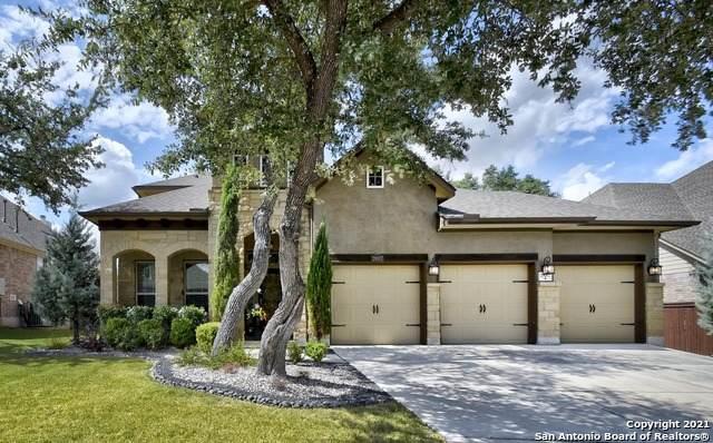 29007 Japonica, San Antonio, TX 78260 (MLS #1564514) :: Vivid Realty