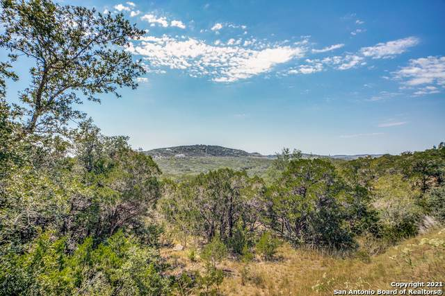 28986 Verde Mountain Trail, San Antonio, TX 78261 (MLS #1564523) :: Carter Fine Homes - Keller Williams Heritage