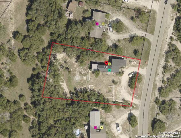 711 Henderson Dr, Spring Branch, TX 78070 (MLS #1564619) :: Alexis Weigand Real Estate Group