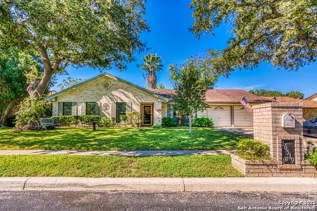 16519 Front Royal St, San Antonio, TX 78247 (MLS #1564626) :: Beth Ann Falcon Real Estate