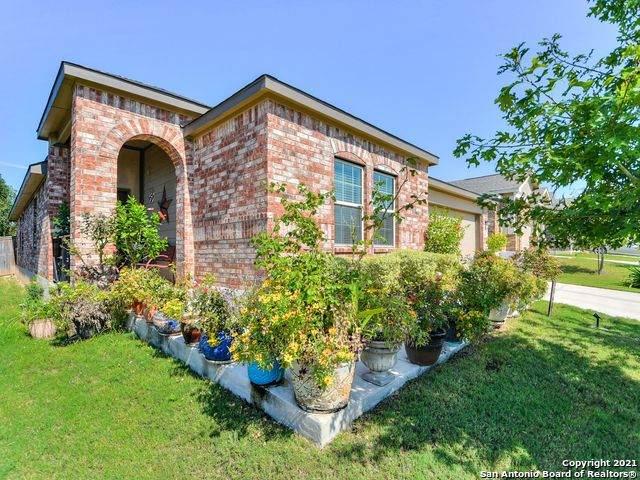 14611 Running Wolf, San Antonio, TX 78245 (MLS #1564631) :: Alexis Weigand Real Estate Group