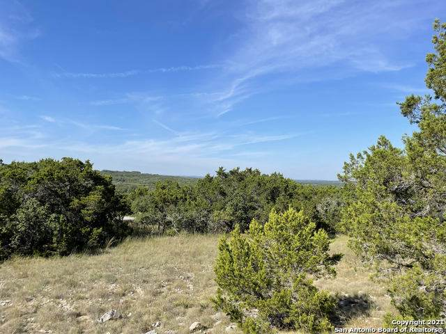 2300 Fm 3424, Canyon Lake, TX 78133 (MLS #1564635) :: The Glover Homes & Land Group