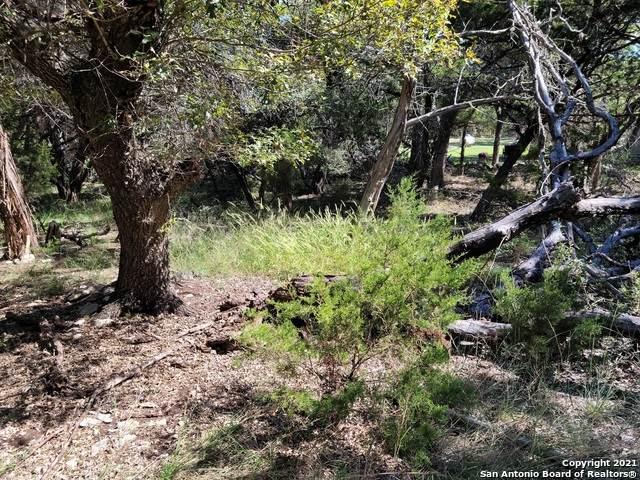 6118 Tanglewood Trail, Spring Branch, TX 78070 (MLS #1564747) :: Beth Ann Falcon Real Estate