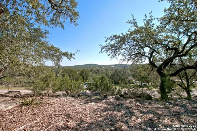 2472 River Way, Spring Branch, TX 78070 (MLS #1564754) :: The Castillo Group