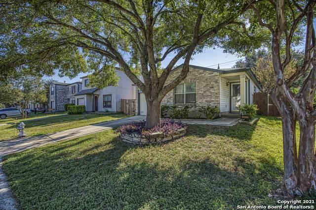 2435 Westgard Pass, San Antonio, TX 78245 (MLS #1564756) :: Carter Fine Homes - Keller Williams Heritage