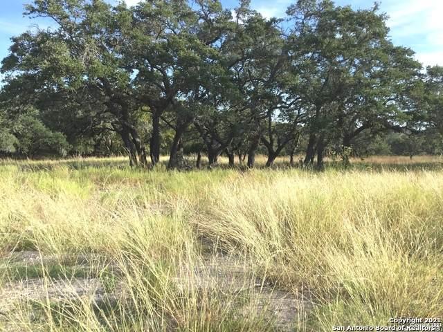 LOT 6 Falling Acorn Drive, Blanco, TX 78606 (MLS #1564770) :: The Curtis Team