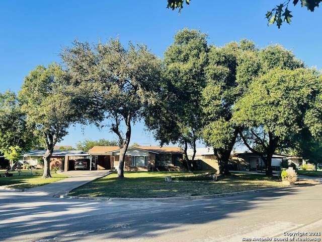 303 Colebrook Dr, San Antonio, TX 78228 (MLS #1564823) :: Concierge Realty of SA