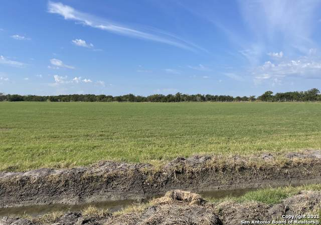 924 Cr 6710, Natalia, TX 78059 (MLS #1564869) :: The Glover Homes & Land Group