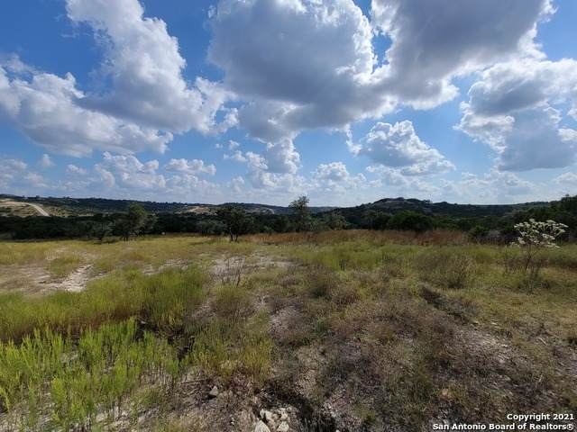 000 Majestic Hills Ranch #89, Blanco, TX 78606 (MLS #1564870) :: The Curtis Team