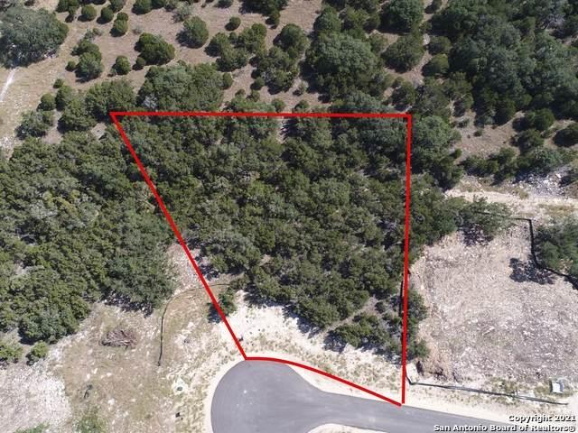 1264 Salt Lick Dr, New Braunfels, TX 78132 (MLS #1564872) :: BHGRE HomeCity San Antonio