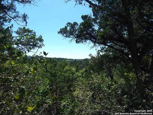 134 County Road 2742, Mico, TX 78056 (MLS #1564945) :: ForSaleSanAntonioHomes.com