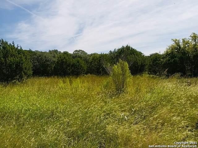1696 Fm 3424, Canyon Lake, TX 78133 (MLS #1565035) :: ForSaleSanAntonioHomes.com