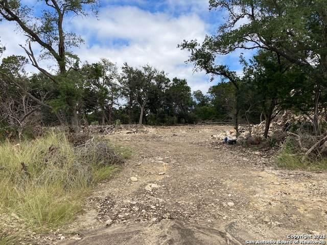 2015 Brunello, New Braunfels, TX 78132 (MLS #1565063) :: BHGRE HomeCity San Antonio