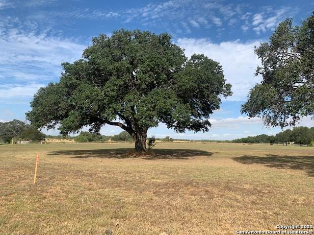 0 Mitch Thomas, Pleasanton, TX 78064 (#1565107) :: The Perry Henderson Group at Berkshire Hathaway Texas Realty