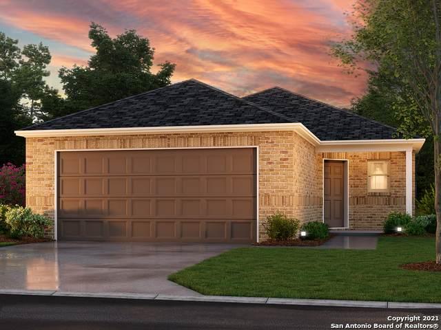 527 Pleasanton Spring, San Antonio, TX 78221 (MLS #1565194) :: Beth Ann Falcon Real Estate