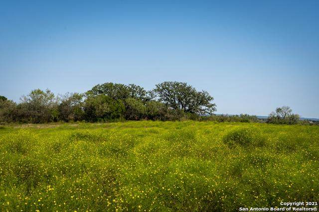 16995 E Gable Rd, St Hedwig, TX 78152 (MLS #1565334) :: The Glover Homes & Land Group