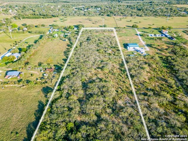 15 ACRES Trumbo Rd, San Antonio, TX 78264 (MLS #1565349) :: The Glover Homes & Land Group