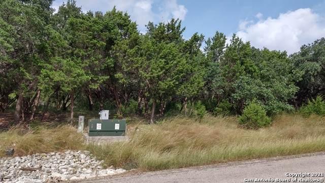 2786 River Way, Spring Branch, TX 78070 (MLS #1565391) :: Concierge Realty of SA