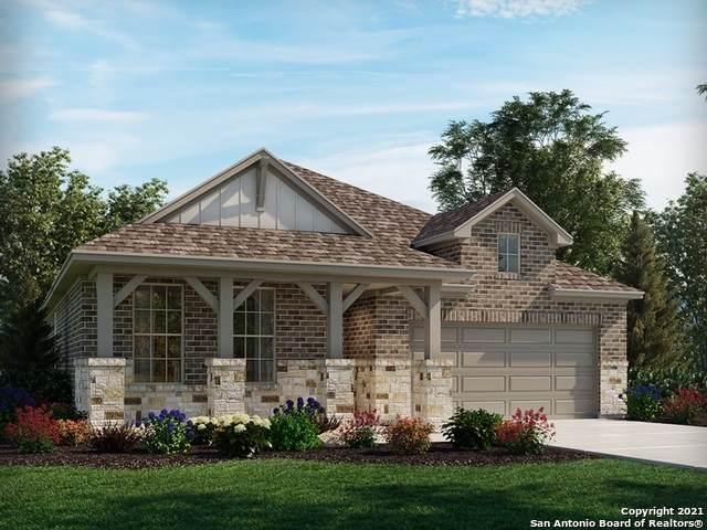 24309 Palermo Way, San Antonio, TX 78261 (MLS #1565441) :: Alexis Weigand Real Estate Group