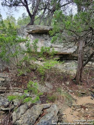 LOT 2068 Canyon Rock, Spring Branch, TX 78070 (MLS #1565465) :: Carter Fine Homes - Keller Williams Heritage