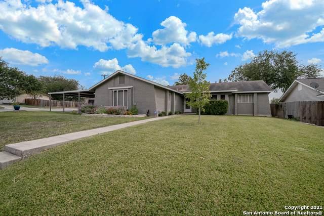 14118 Short Horn Dr, San Antonio, TX 78247 (MLS #1565468) :: Vivid Realty