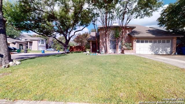 3403 Sunlit Grove, San Antonio, TX 78247 (MLS #1565483) :: The Glover Homes & Land Group