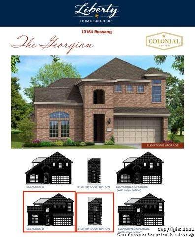 10164 Bussang, Schertz, TX 78154 (MLS #1565537) :: 2Halls Property Team   Berkshire Hathaway HomeServices PenFed Realty