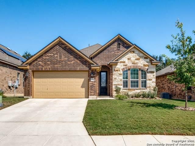 25744 Two Springs, San Antonio, TX 78255 (MLS #1565546) :: The Real Estate Jesus Team