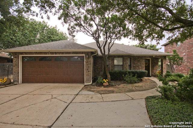 14110 Edge Point Dr, San Antonio, TX 78230 (MLS #1565697) :: Vivid Realty