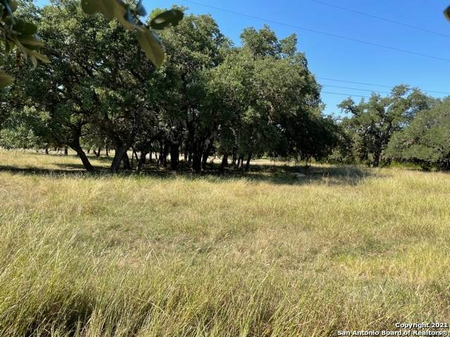 473 Mills Ln, Pipe Creek, TX 78063 (MLS #1565754) :: The Glover Homes & Land Group