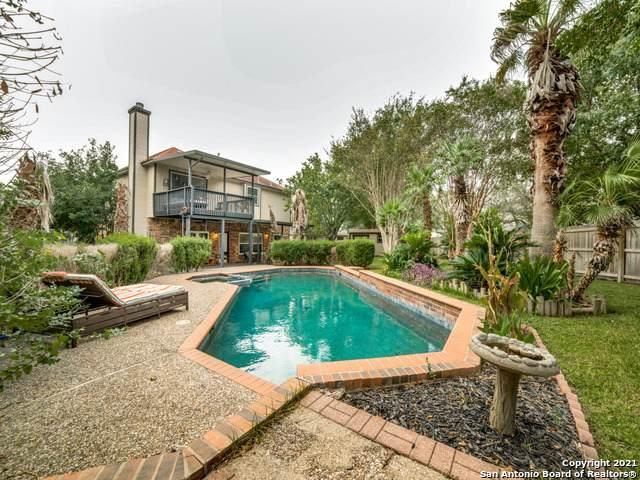 15114 Spring Glen, San Antonio, TX 78247 (MLS #1565762) :: The Castillo Group