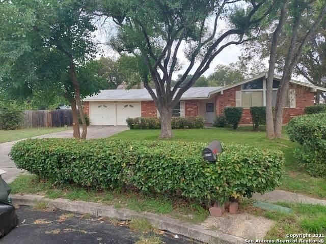 8114 Rain Forest, San Antonio, TX 78239 (MLS #1565794) :: Alexis Weigand Real Estate Group