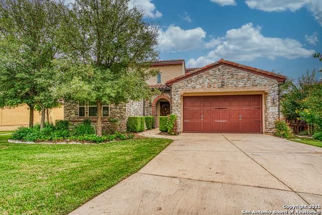 22331 Viajes, San Antonio, TX 78261 (MLS #1565805) :: Vivid Realty