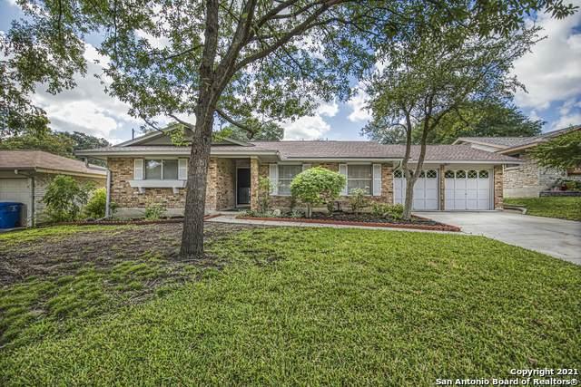 10419 Apple Gate Dr, San Antonio, TX 78230 (MLS #1565816) :: Alexis Weigand Real Estate Group