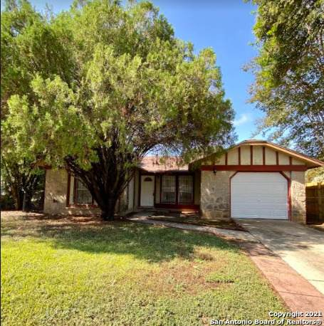 923 Green Park St, San Antonio, TX 78227 (MLS #1565820) :: Alexis Weigand Real Estate Group