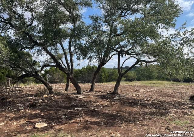 257 Lantana Cerro, Spring Branch, TX 78070 (MLS #1565930) :: The Lopez Group