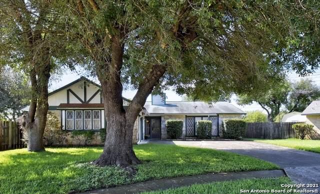 13200 Montecito St, San Antonio, TX 78233 (MLS #1566060) :: The Castillo Group