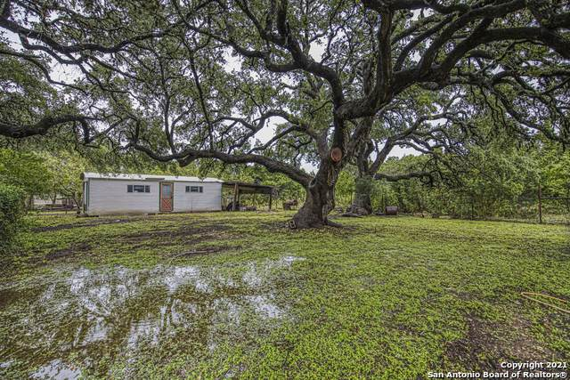 1656 Lakeview Dr, Canyon Lake, TX 78133 (MLS #1566088) :: The Glover Homes & Land Group