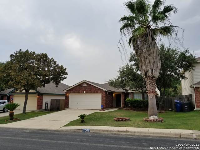 1041 Lynx Bend, San Antonio, TX 78251 (MLS #1566095) :: The Lopez Group
