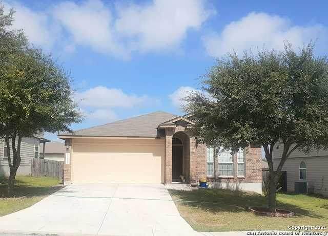 11615 Wayward Daisy, San Antonio, TX 78245 (MLS #1566104) :: The Gradiz Group