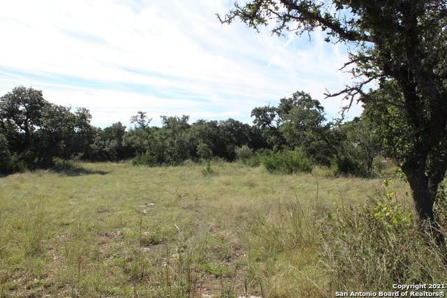 1590 Cottonwood Rd, Fischer, TX 78623 (MLS #1566157) :: ForSaleSanAntonioHomes.com